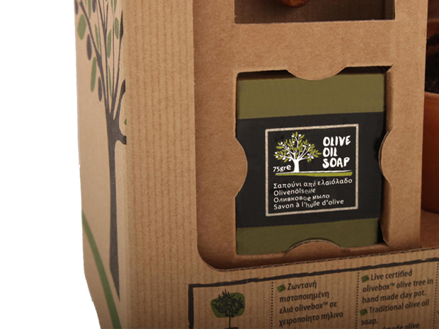 Project big olive box 02