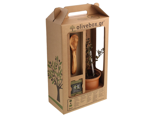 Project big olive box 03